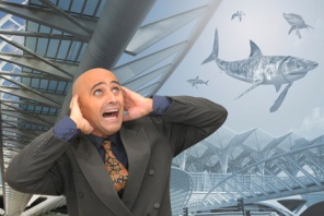 Cabinet Tracking Software – Avoiding the Sharks